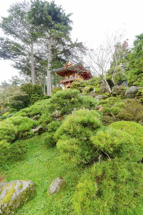 Giardino di tè giapponese, San Francisco immagine stock