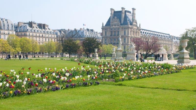 Giardino di Tuileries a Parigi fotografia stock libera da diritti