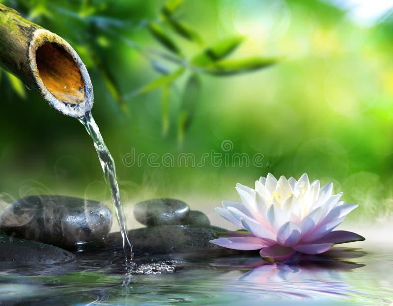 Giardino di zen con le pietre di massaggio fotografia stock libera da diritti