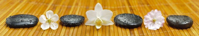 Giardino di zen di panorama fotografia stock libera da diritti