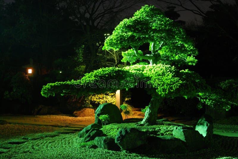 Giardino di zen entro la notte fotografia stock