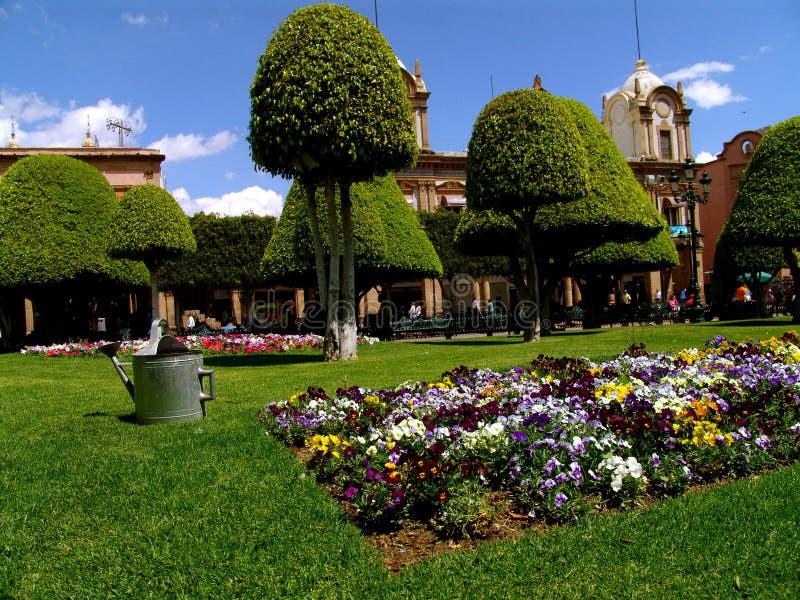 Giardino di Zocalo di Leon immagine stock