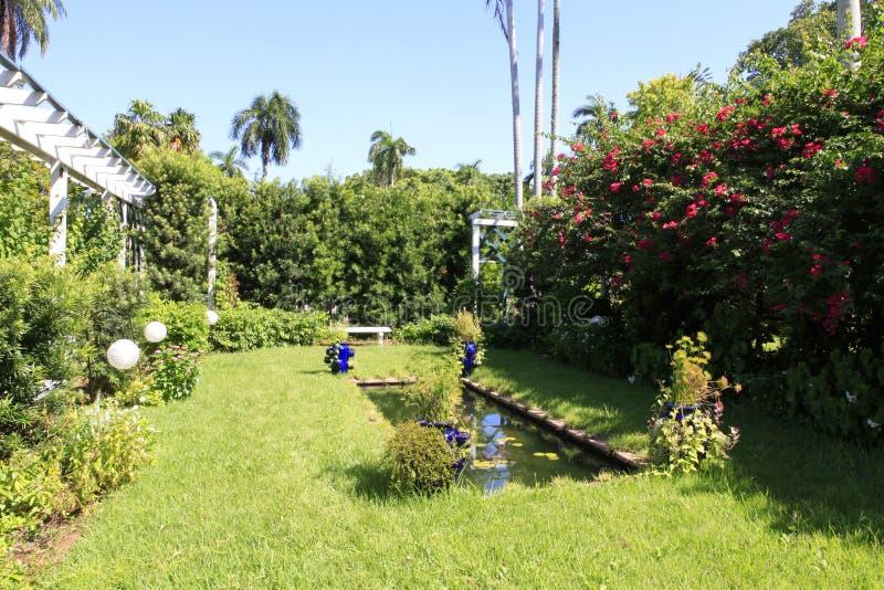 Giardino domestico con il piccolo stagno immagini stock