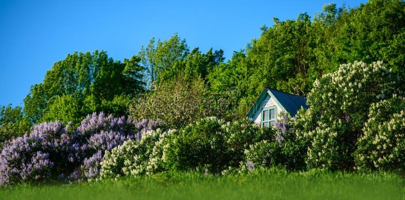 Giardino e casa fotografia stock