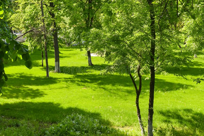 Giardino europeo della citt? in un giorno di estate fotografie stock