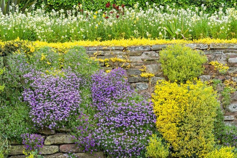 Giardino floreale della parete di pietra fotografia stock