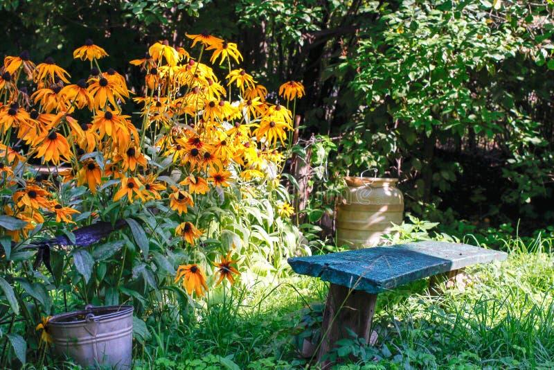 Giardino floreale di estate alla casa immagine stock