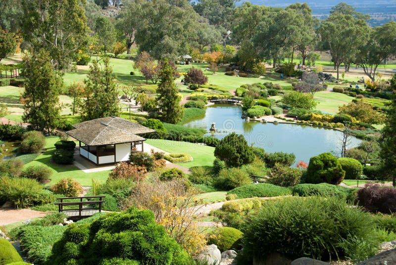 Giardino giapponese immagine stock immagine di piante 5006597 - Piante per giardino giapponese ...