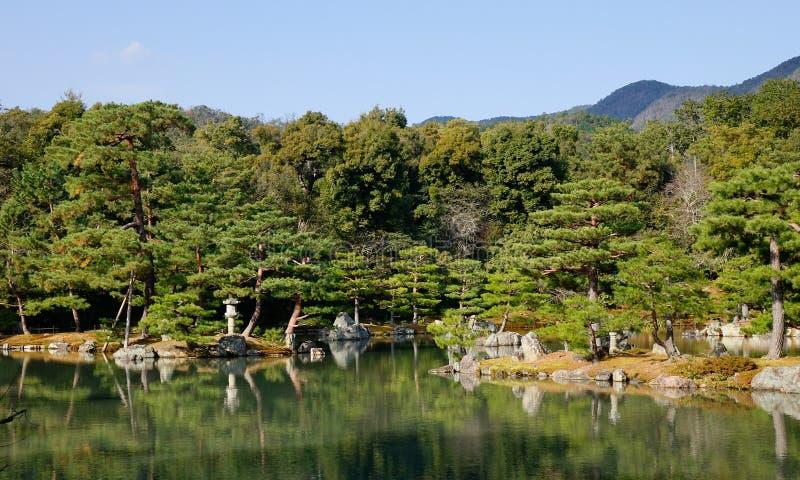 Giardino giapponese con il lago ed i pini immagine stock