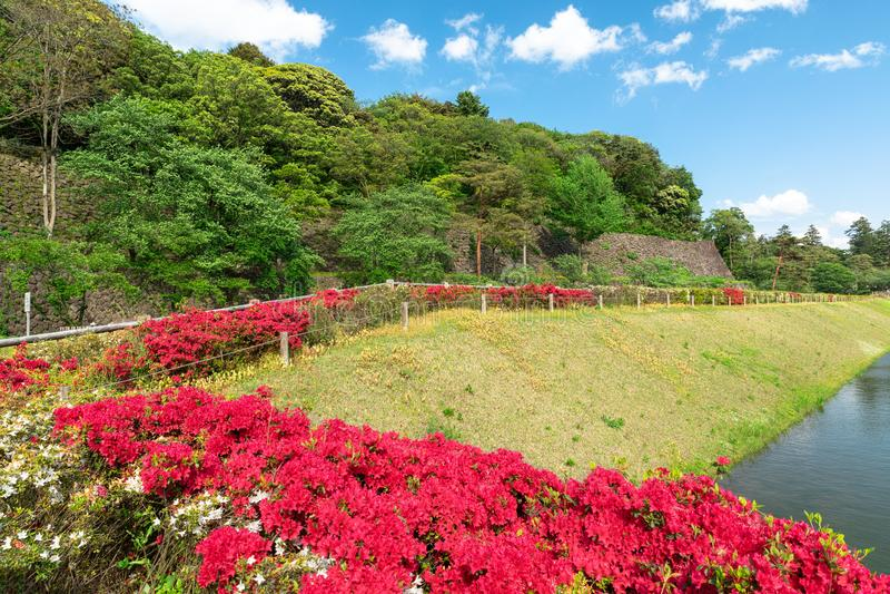 Giardino giapponese a Kanazawa, Giappone fotografie stock libere da diritti