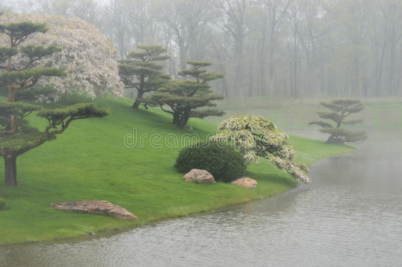 Giardino giapponese nebbioso immagini stock