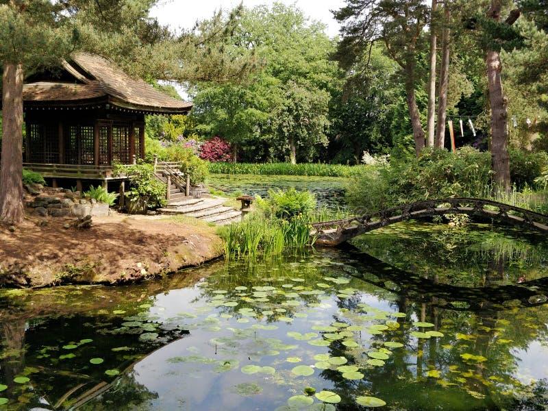 Giardino giapponese, pace immagine stock libera da diritti