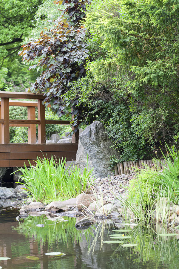 Giardino giapponese piante gallery of giardino zen piante e pietre with giardino giapponese - Piante per giardino giapponese ...