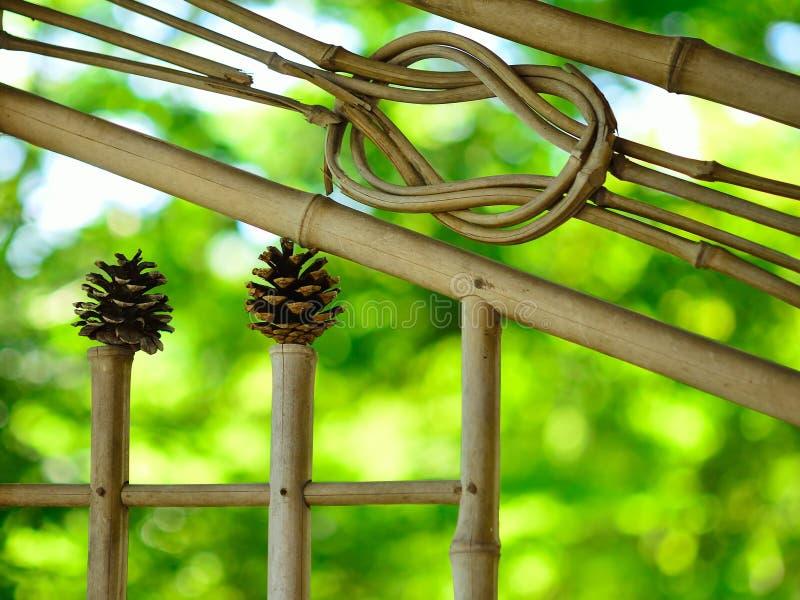 Giardino giapponese, vetro di finestra di bambù Kyoto Giappone immagine stock