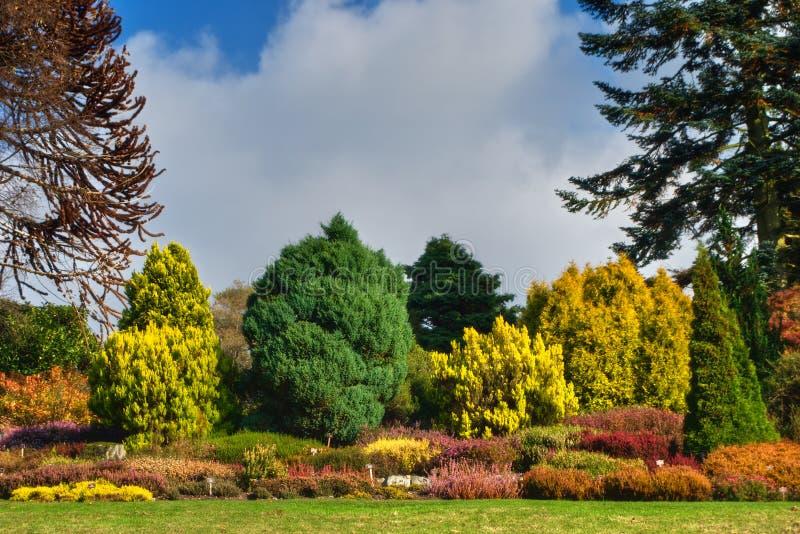 Giardino inglese in autunno immagine stock immagine 3529271 - Giardino in inglese ...