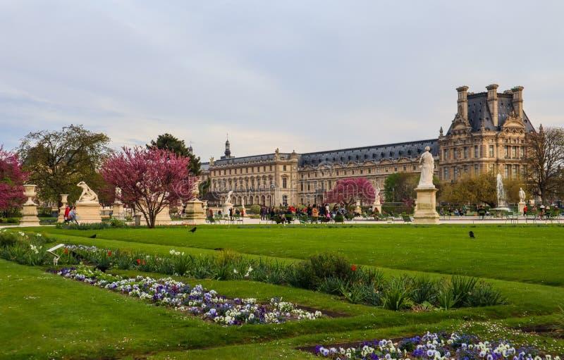 Giardino meraviglioso e vista di Tuileries della molla al palazzo del Louvre a Parigi Francia Aprile 2019 fotografie stock