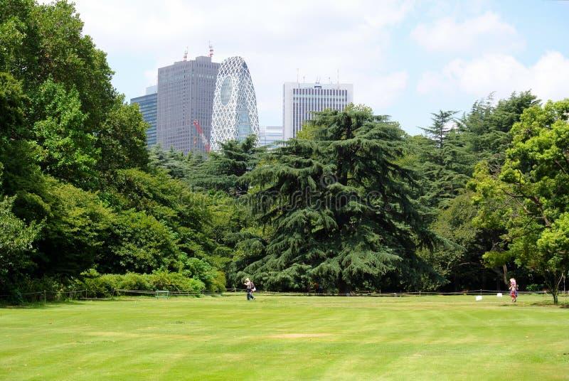 Giardino nazionale Tokyo di Shinjuku Gyoen fotografia stock libera da diritti