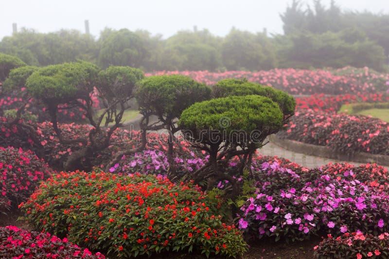 Giardino ornamentale reale tailandese fotografia stock libera da diritti