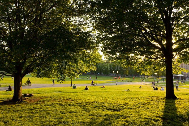 Giardino pubblico di Boston fotografia stock