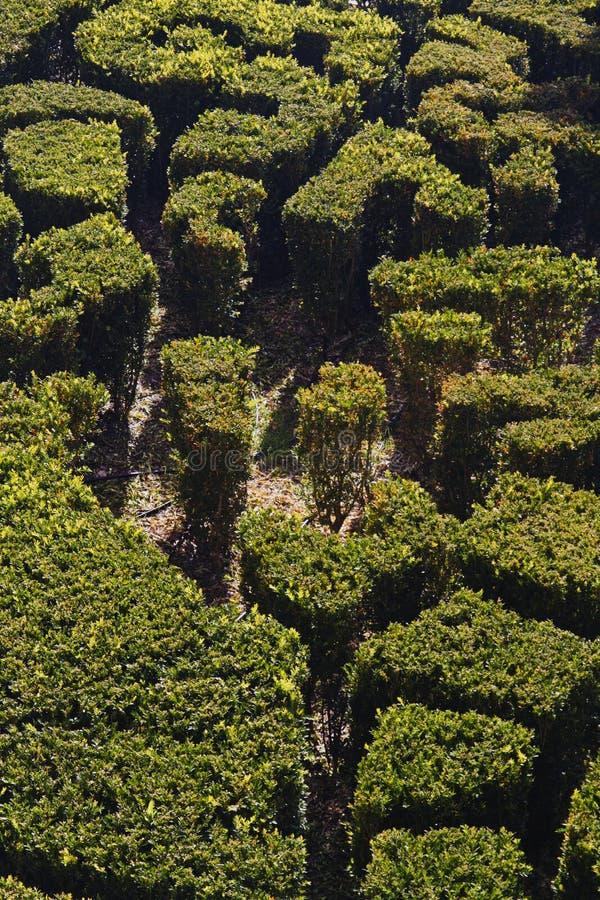 Giardino reale di Cascata immagini stock libere da diritti