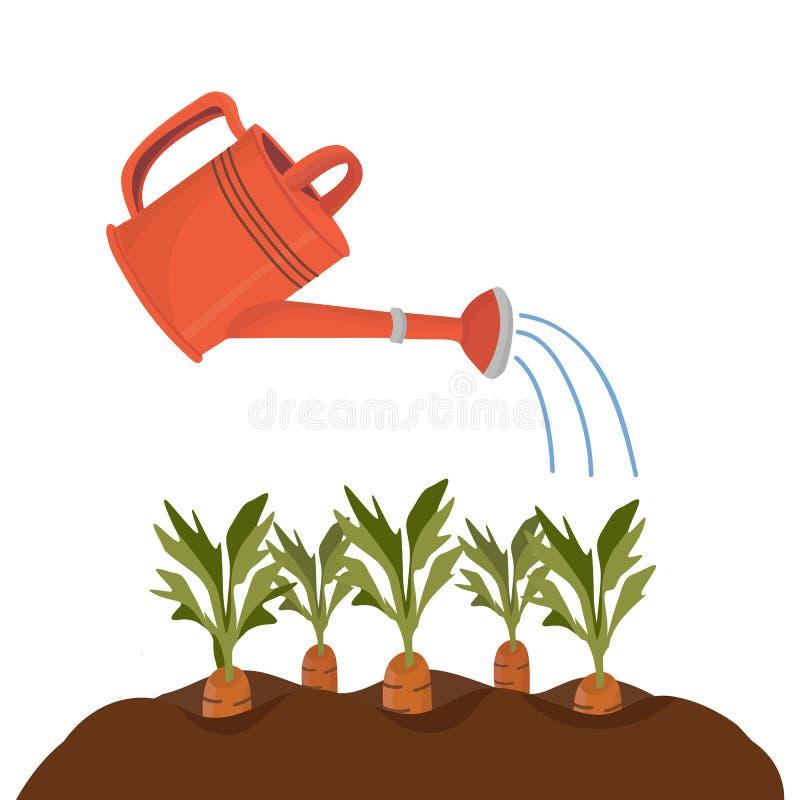 Giardino rosso con i letti con le carote royalty illustrazione gratis