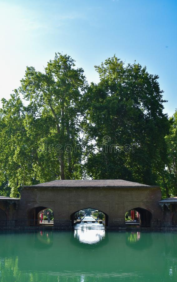 Giardino storico ed architettonico di Mughal con costruzione monumentale ed alberi che riflettono sull'acqua presa a Kashmir Vall fotografia stock