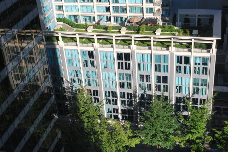 Giardino superiore del tetto immagini stock libere da diritti