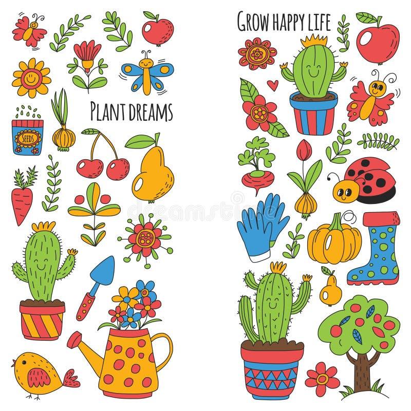 Giardino sveglio con gli uccelli, cactus, piante, frutti, bacche, strumenti di giardinaggio, modello di vettore del mercato del g illustrazione di stock