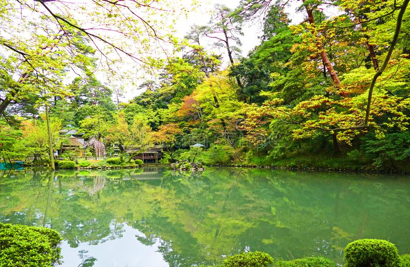 Giardino tradizionale di Kenrokuen del giapponese a Kanazawa, Giappone immagine stock libera da diritti