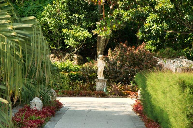 Download Giardino tropicale immagine stock. Immagine di stile, sviluppo - 7315555