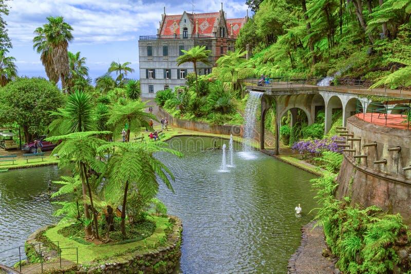 Giardino tropicale del palazzo di monte funchal madera - Giardino tropicale ...