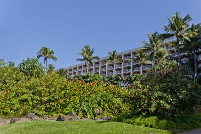 Giardino tropicale hawaiano immagini stock