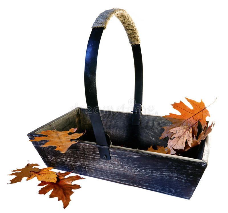 Giardino Trug con Autumn Leaves fotografie stock libere da diritti