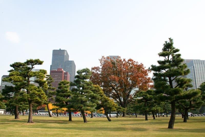 Giardino vicino al palazzo imperiale, Tokyo immagine stock