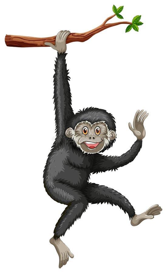 Gibbon royaltyfri illustrationer
