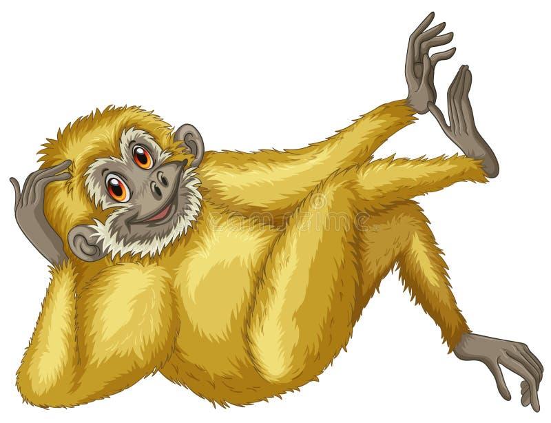 Gibbon stock illustrationer