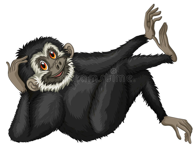 gibbon stock illustratie