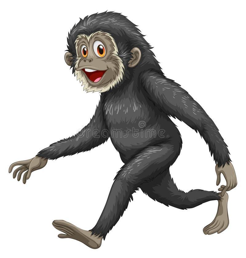 Gibbon ilustracja wektor