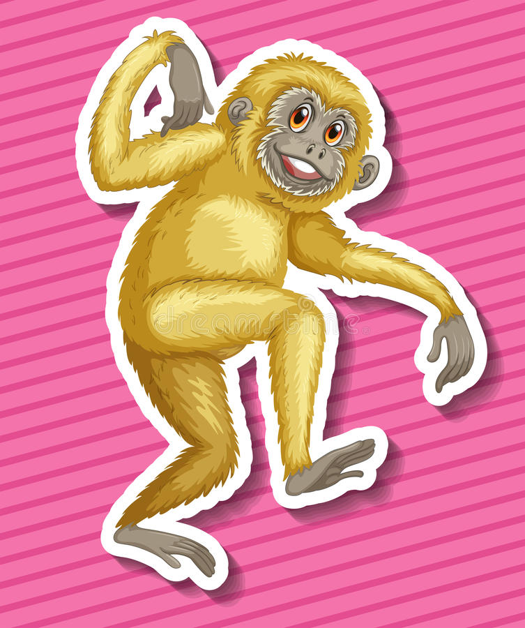 gibbon vector illustratie