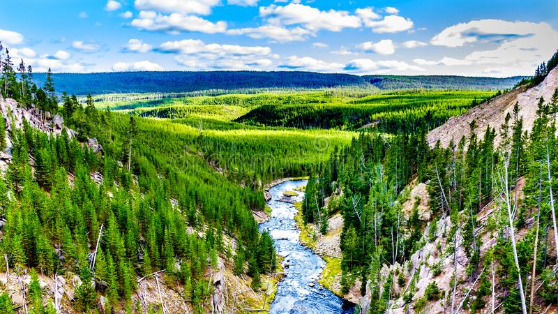 The Gibbon River downstream of Gibbon Falls in Yellowstone National Park. In Wyoming, United States of America stock photo