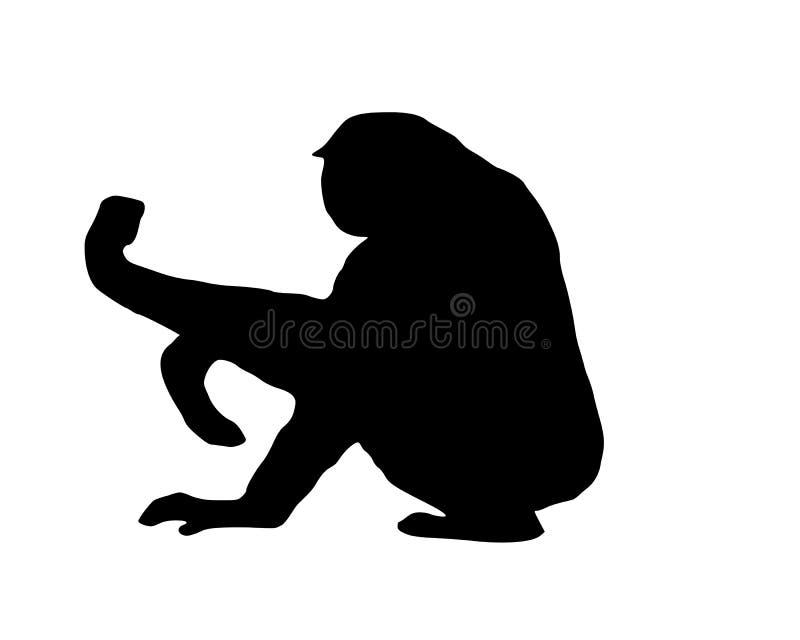 Gibbon su bianco royalty illustrazione gratis