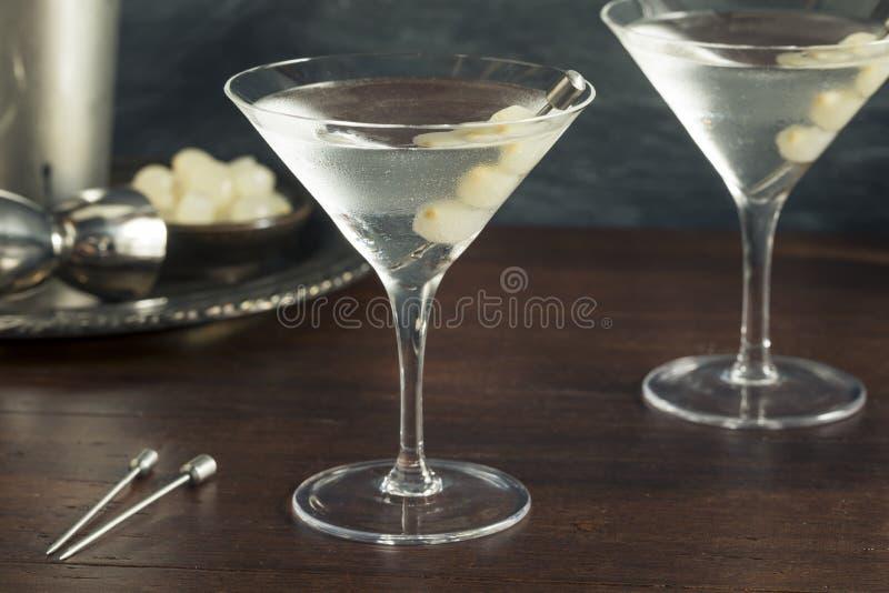 Gibson Martini embriagado caseiro imagem de stock royalty free