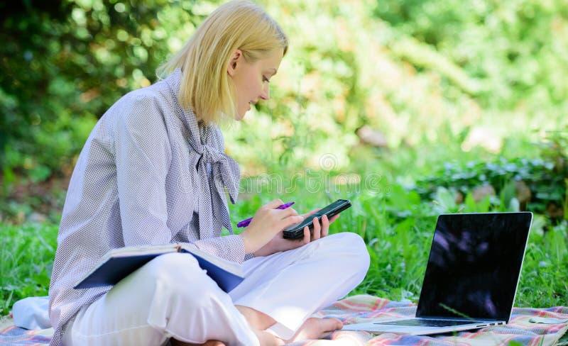 Gids die freelance carrière beginnen Word succesvolle freelancer In openlucht beherend zaken De vrouw met laptop zit gras stock foto