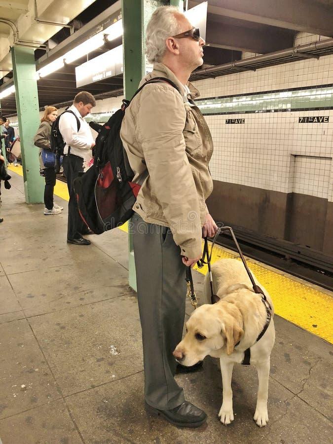 Gidshond en Mens in Metro royalty-vrije stock afbeeldingen
