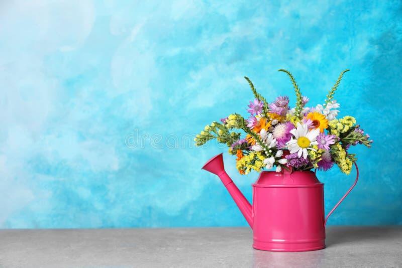 Gießkanne mit schönen wilden Blumen lizenzfreie stockbilder