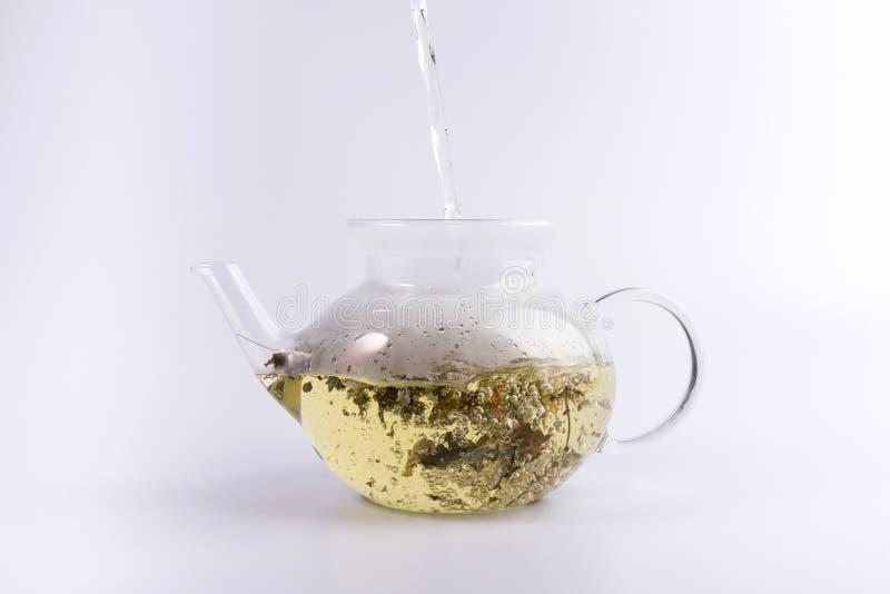 Gietend warm water aan de glastheepot met aftreksel, dat op wit wordt geïsoleerd stock fotografie