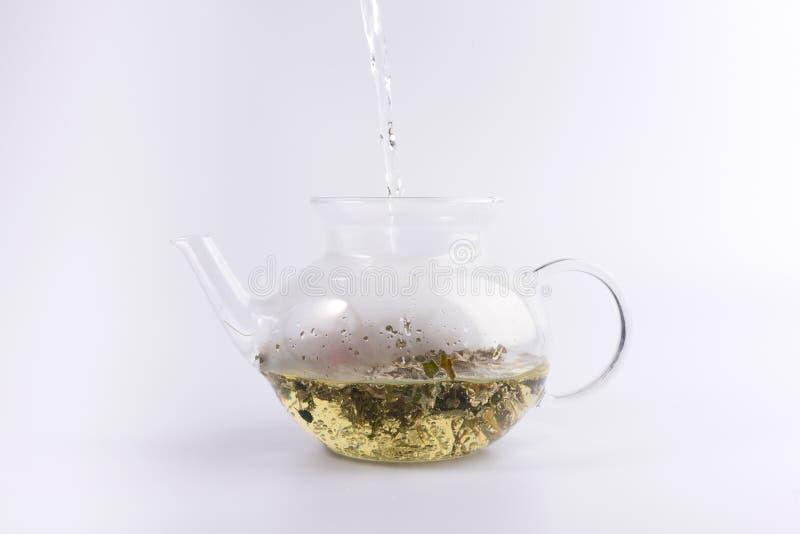 Gietend warm water aan de glastheepot met aftreksel, dat op wit wordt ge?soleerd stock foto