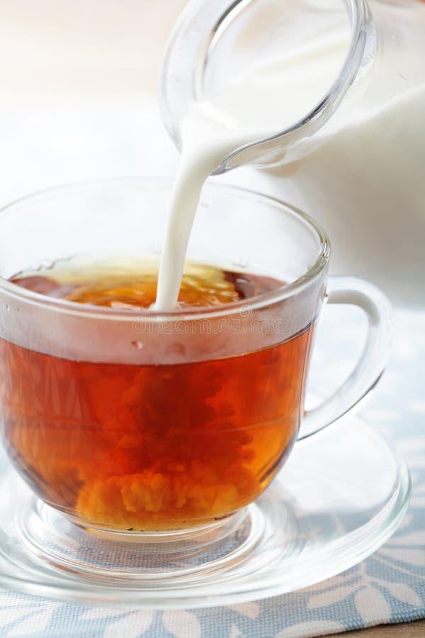 Gietende melk in kop met thee royalty-vrije stock afbeelding