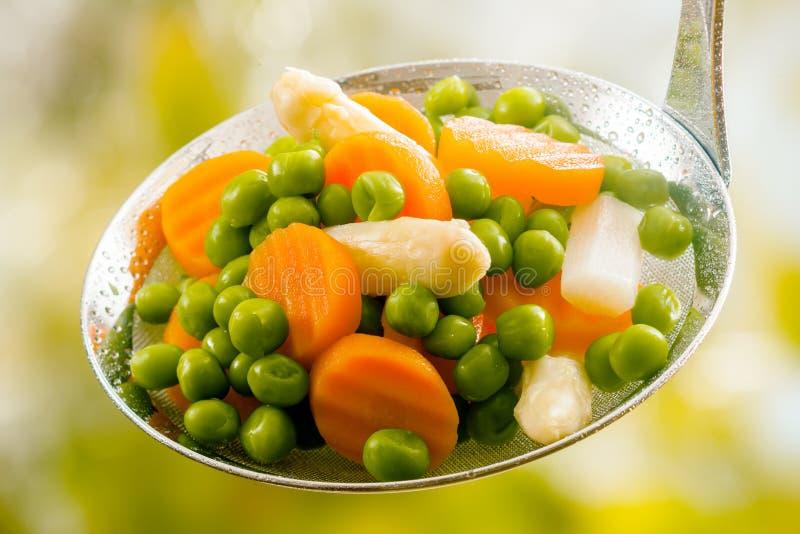 Gietlepel van gekookte vers geoogste jonge groenten royalty-vrije stock foto's