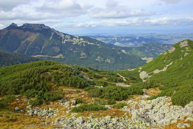 Giewont berg för landskapod Tatras i Polen arkivbilder